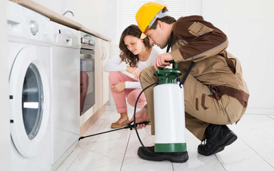 Professionals For Effective Pest Control